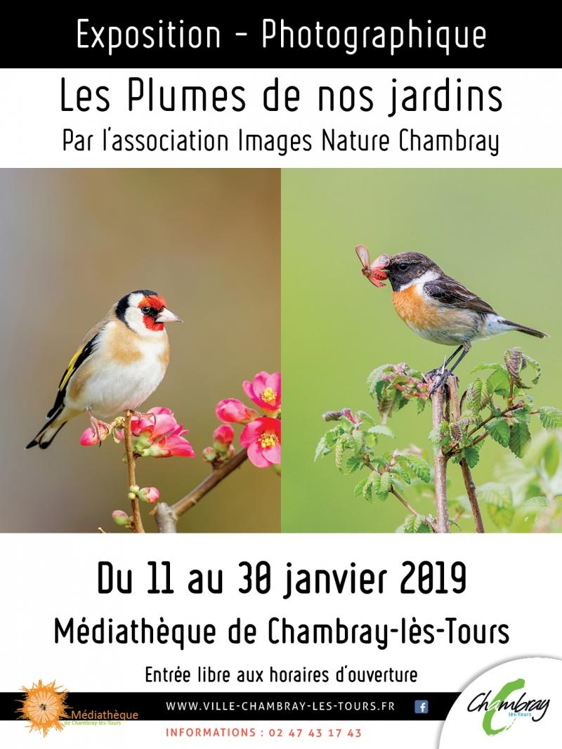 """Exposition """"Les plumes de nos jardins""""  # Chambray lès Tours @ Médiathèque"""