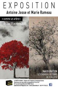 """"""" Comme un arbre """"  # Tours @ La Boite Noire, Espace de Créations Contemporaines"""